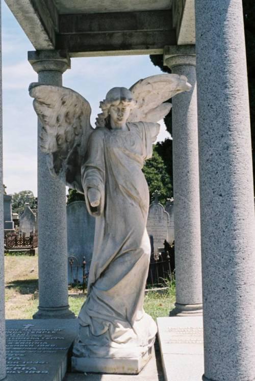 Broken Angel 02