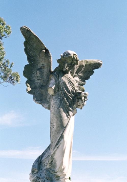 Broken Angel 03
