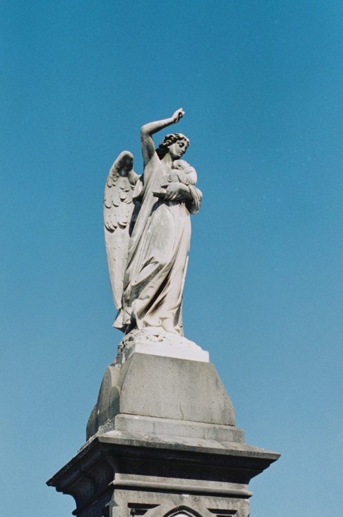 O'Hara Angel