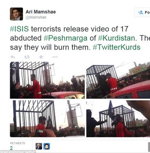 Twitter 17 to burn