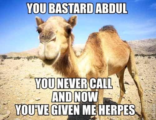 You Bastard Abdul