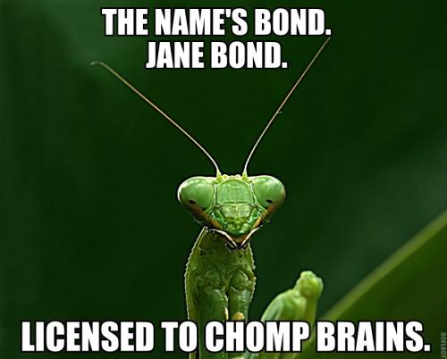 Bond Jane Bond
